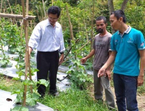 Pendampingan Pembuatan Pupuk Organik Cair dan Mikroorganisme Lokal