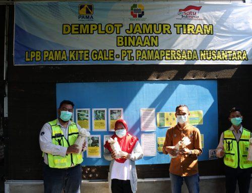 CSR PAMA Tanjung Enim Mandirikan UMKM Jamur Tiram