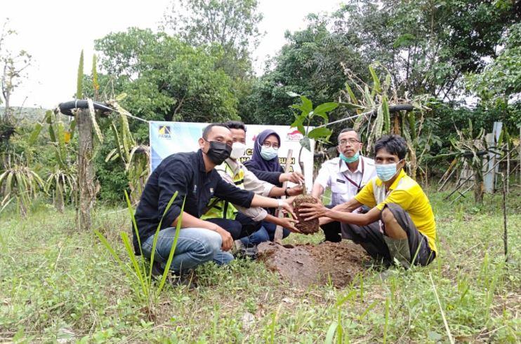 CSR Dan LPB Pama Berikan 200 Pohon Buah Kepada Petani Mitra Binaan